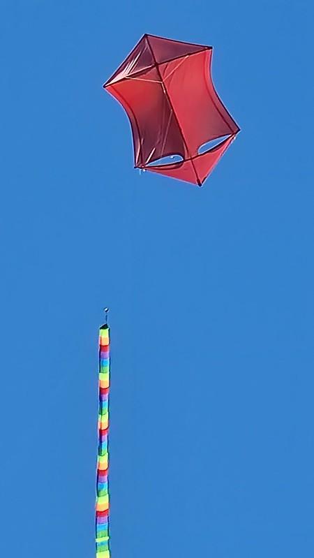 Kite Rescue!