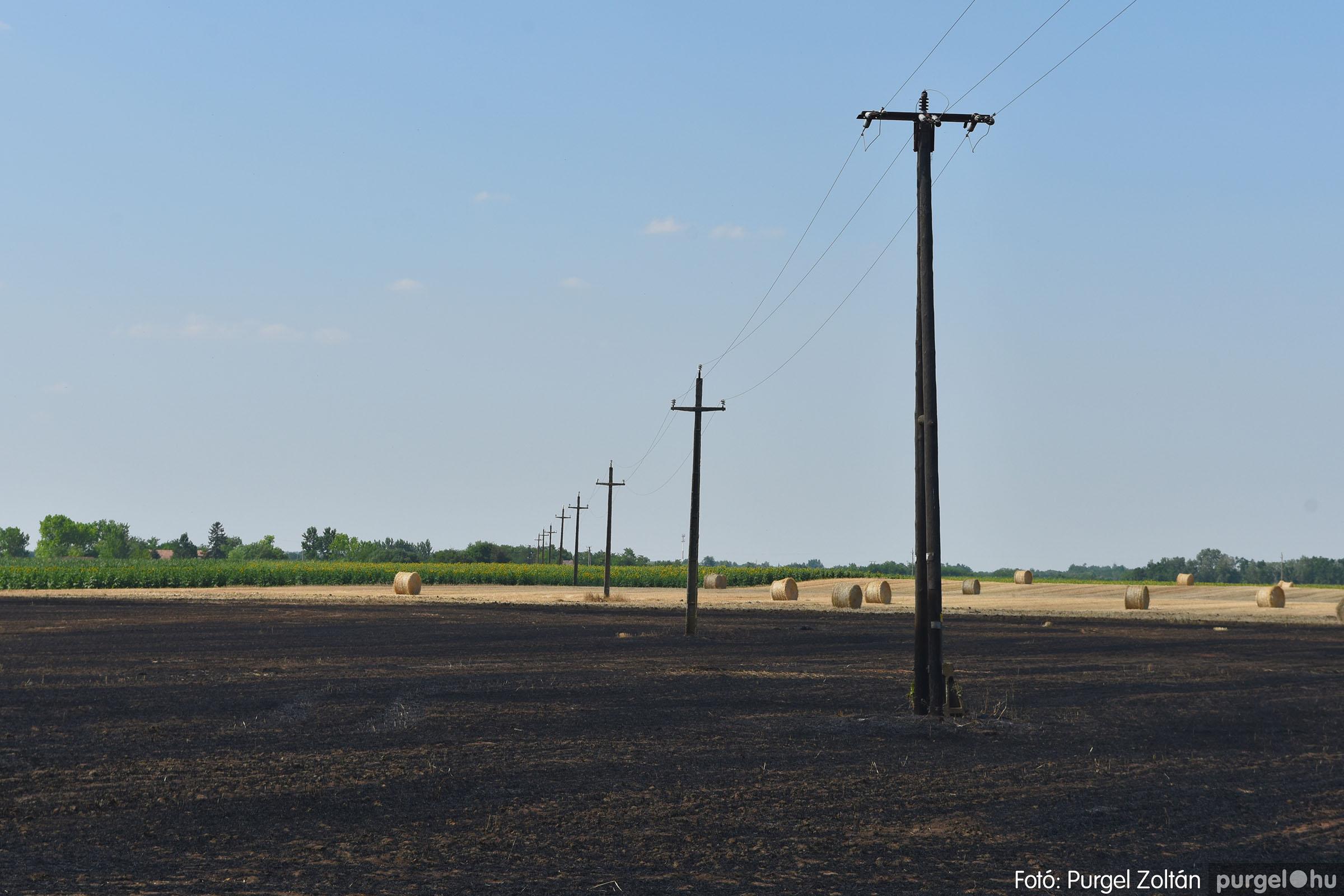 2021.07.08. 008 Égett a tarló a Grűner-telep közelében - Fotó:PURGEL ZOLTÁN© DSC_8065q.jpg