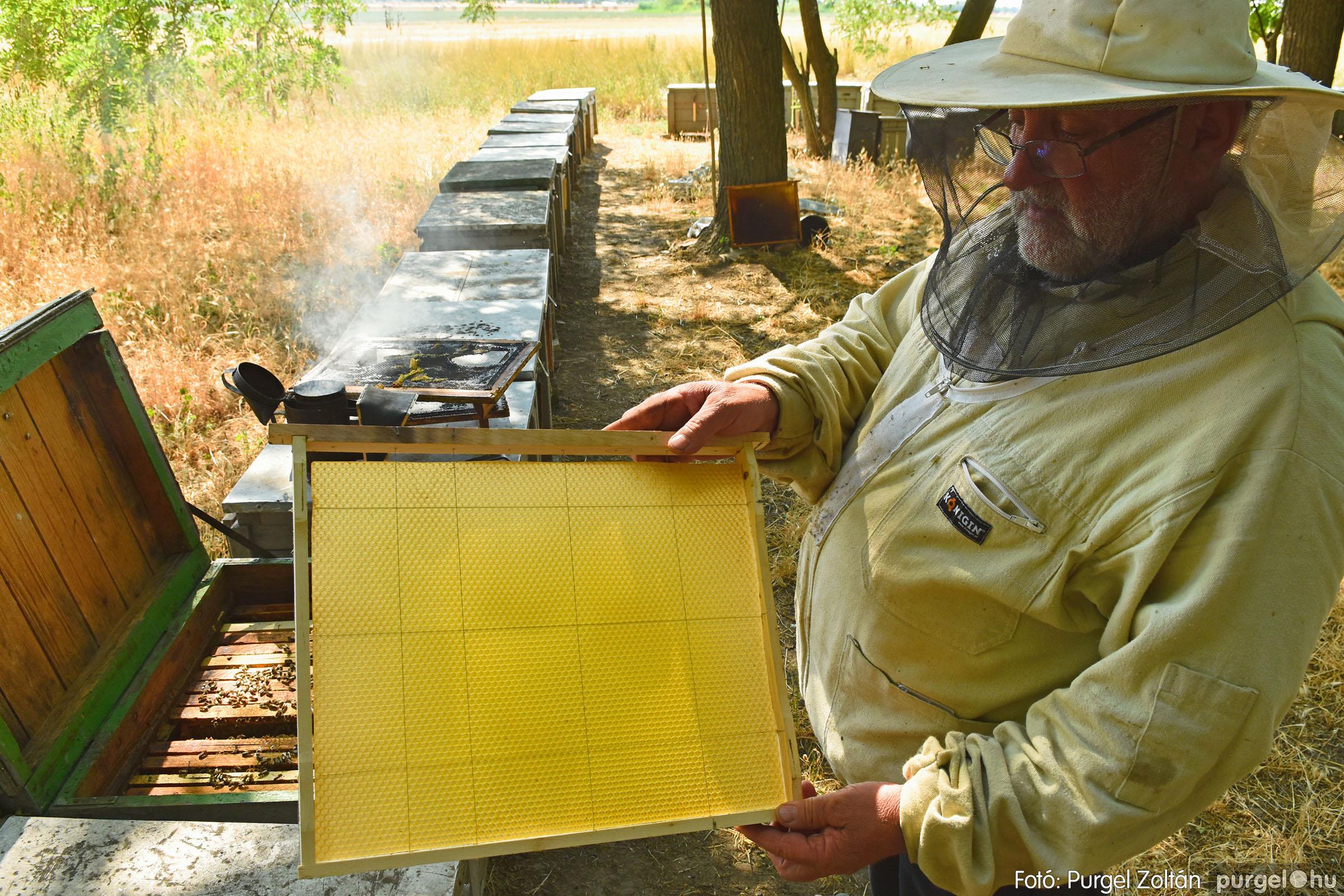 2021.07.08. 032 Gyenes Béla méhészetében - Fotó:PURGEL ZOLTÁN© DSC_8161q.jpg
