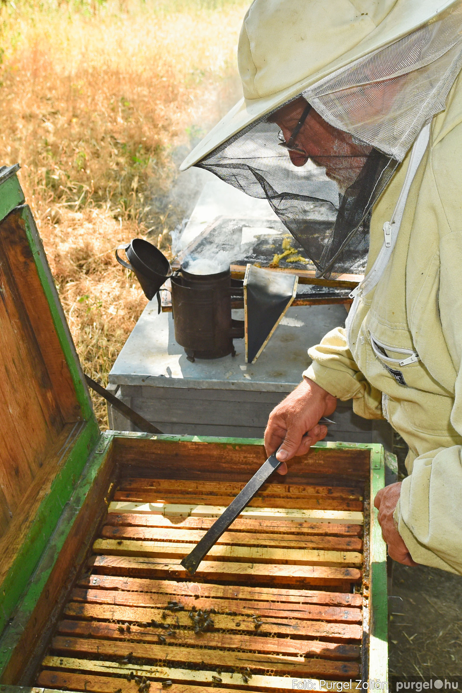 2021.07.08. 021 Gyenes Béla méhészetében - Fotó:PURGEL ZOLTÁN© DSC_8141q.jpg
