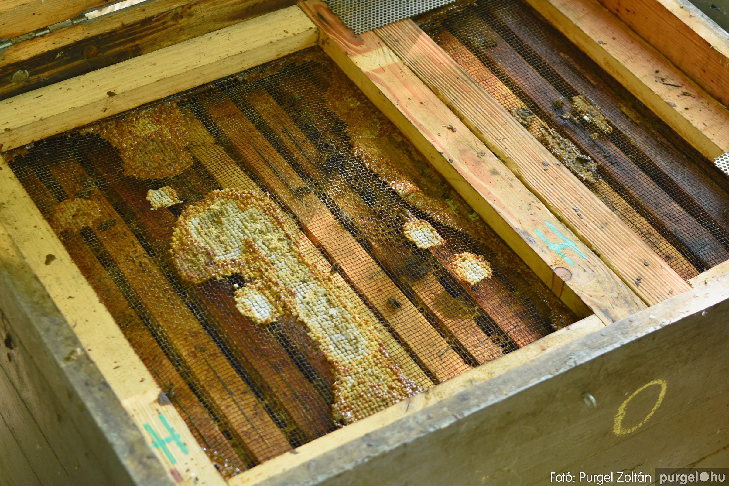2021.07.08. 007 Gyenes Béla méhészetében - Fotó:PURGEL ZOLTÁN© DSC_8088q.jpg
