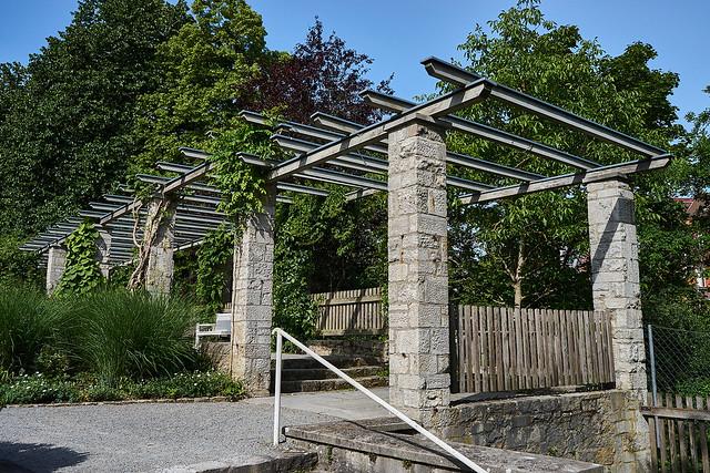 DSC26414 Würzburg Japanischer Garten + Rosengarten 2020