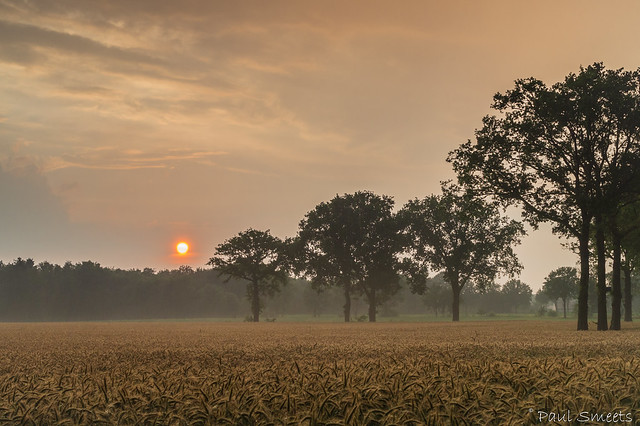 July 8 sunset