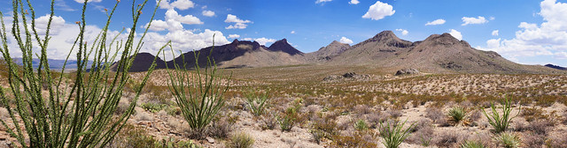 Chihuahuan Desert Landscape Panorama