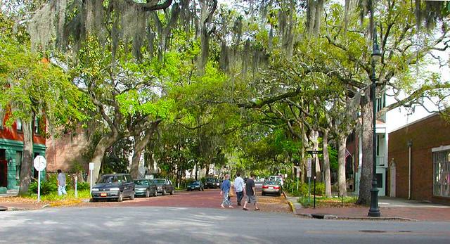 Delightful Canopied Boulevard - Savannah's Fused Grid