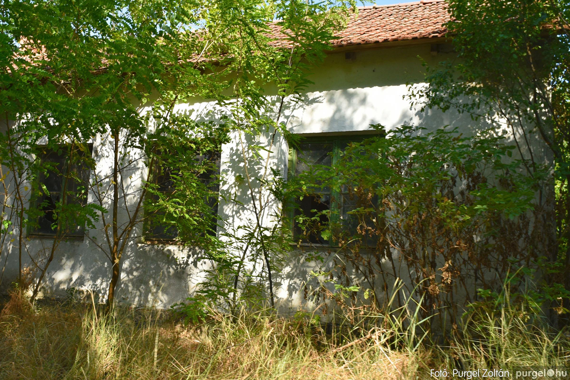 2021.07.08. 011 Barangolás az egykori Grüner-telepen és környékén - Fotó:PURGEL ZOLTÁN© DSC_8189q.jpg