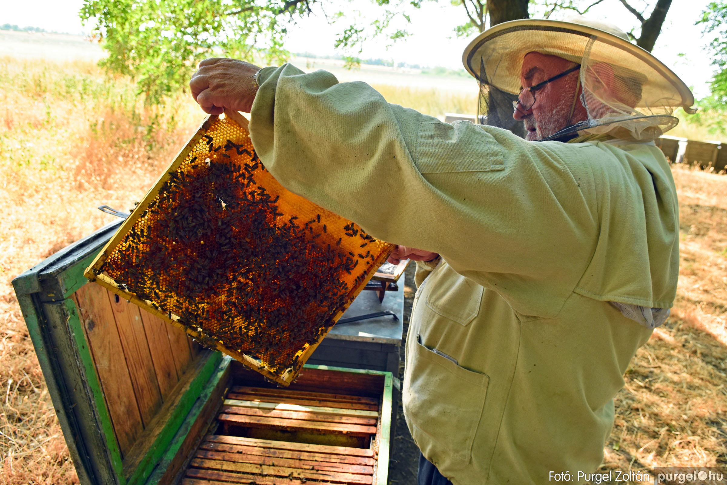 2021.07.08. 017 Gyenes Béla méhészetében - Fotó:PURGEL ZOLTÁN© DSC_8134q.jpg