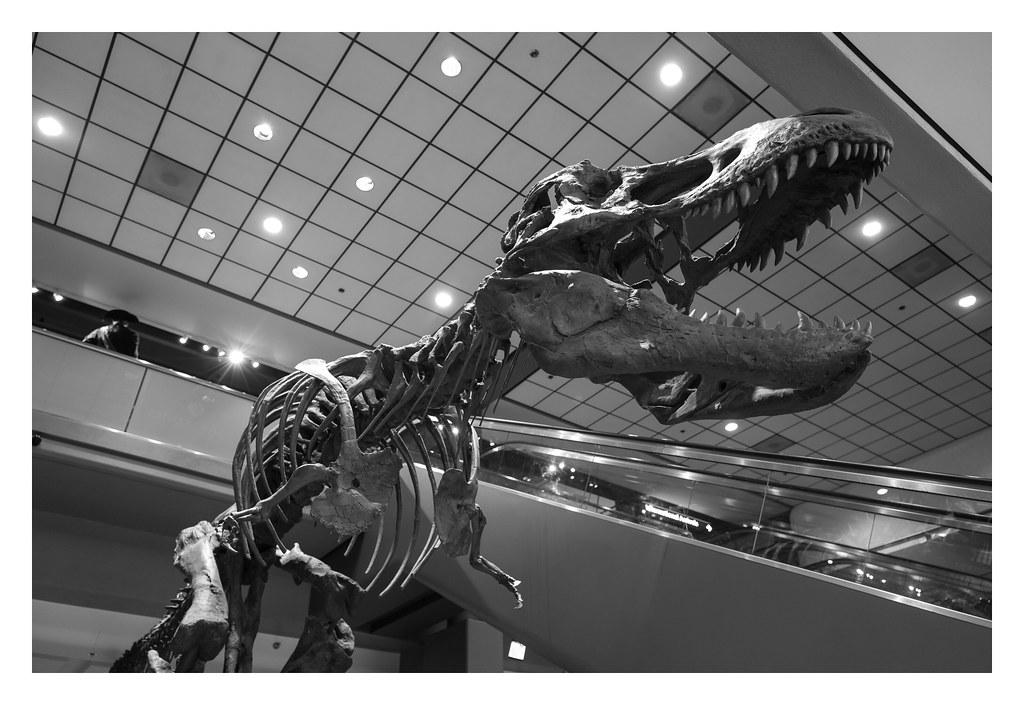 Pittsburgh Airport Dinosaur