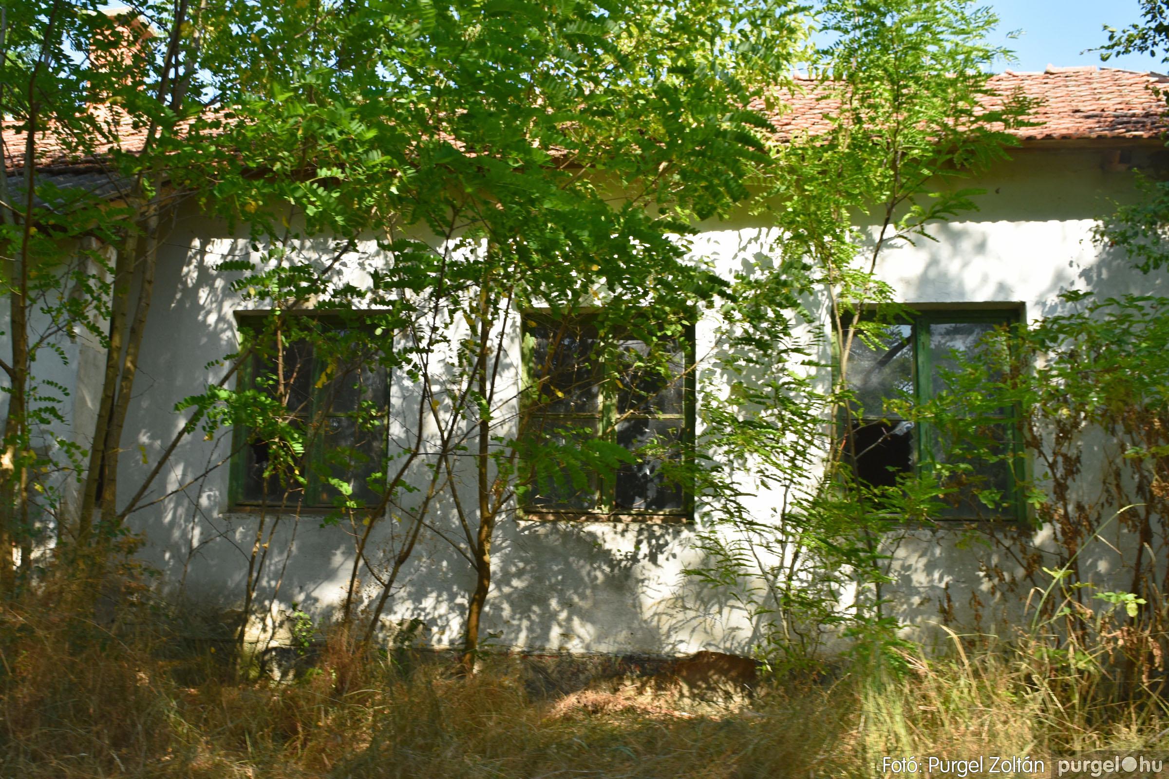 2021.07.08. 012 Barangolás az egykori Grüner-telepen és környékén - Fotó:PURGEL ZOLTÁN© DSC_8190q.jpg