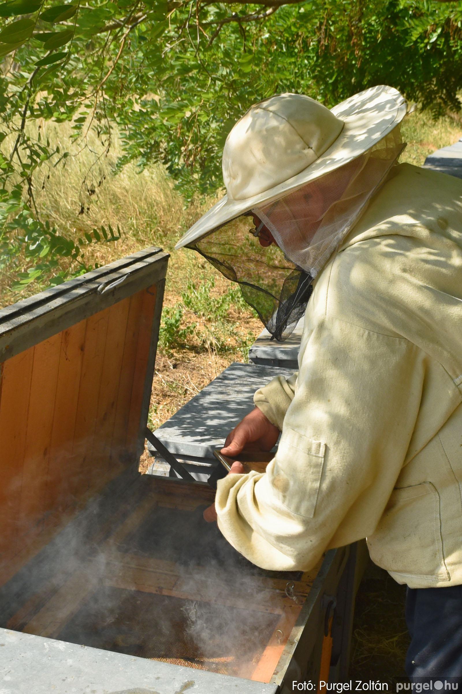 2021.07.08. 036 Gyenes Béla méhészetében - Fotó:PURGEL ZOLTÁN© DSC_8168q.jpg