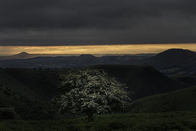 Morning on the Mynd
