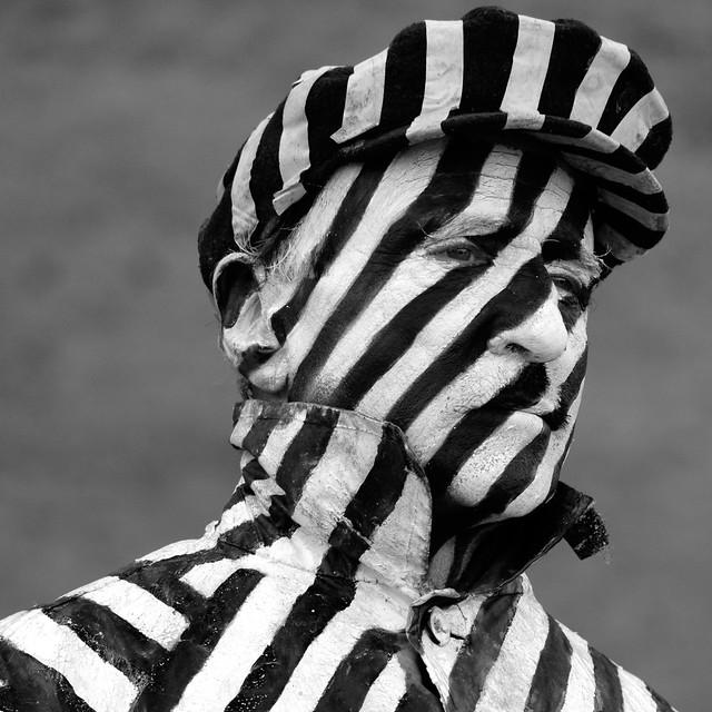 Black and white zebra stripes.