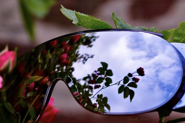 HS🌞S! Reflective sunglasses