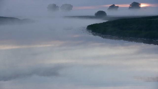 Morgens an der Alten Treeneschleife in Süderhöft; Nordfriesland (15)
