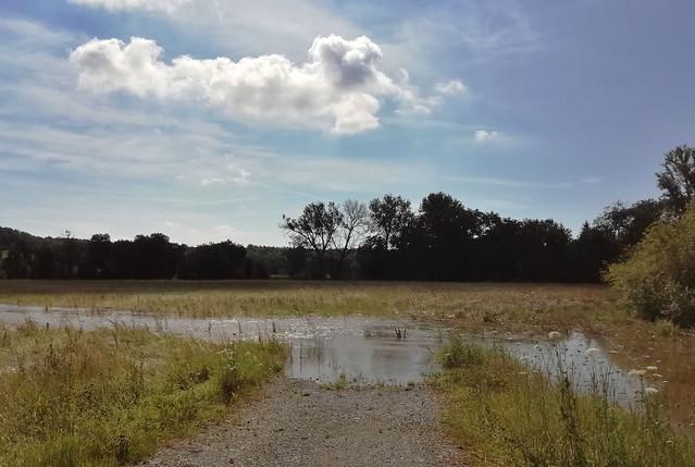 Flooding (explored July 10, 2021)