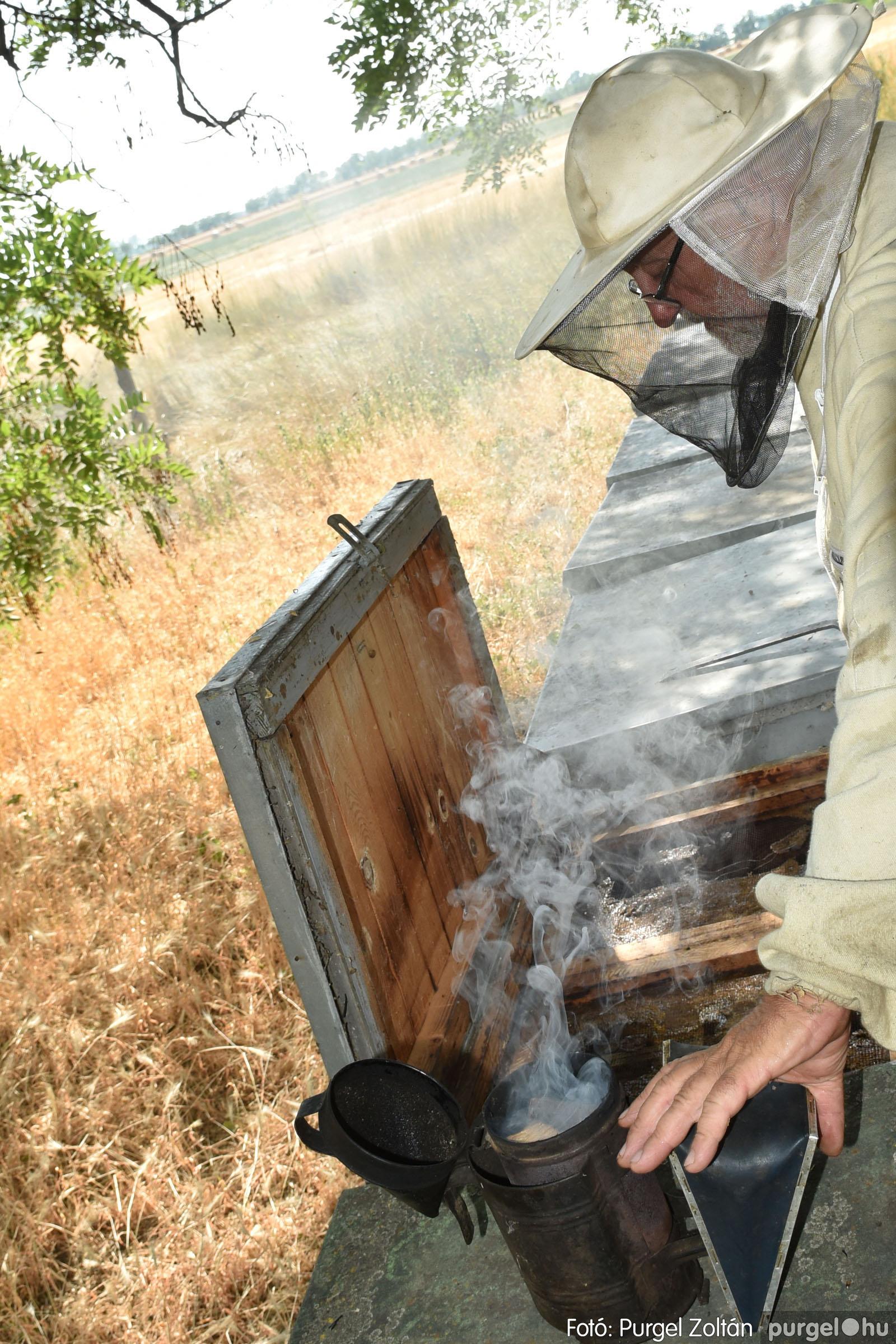 2021.07.08. 033 Gyenes Béla méhészetében - Fotó:PURGEL ZOLTÁN© DSC_8164q.jpg