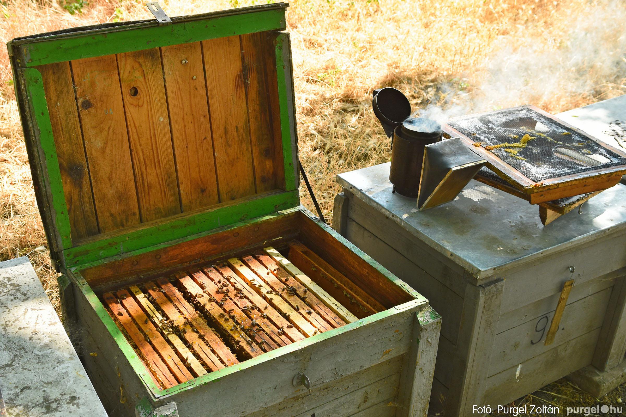2021.07.08. 030 Gyenes Béla méhészetében - Fotó:PURGEL ZOLTÁN© DSC_8159q.jpg