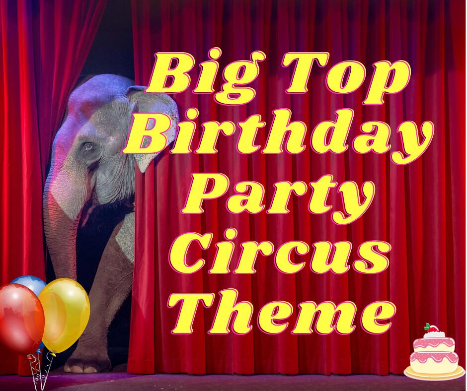 Big Top Birthday Party Circus Theme