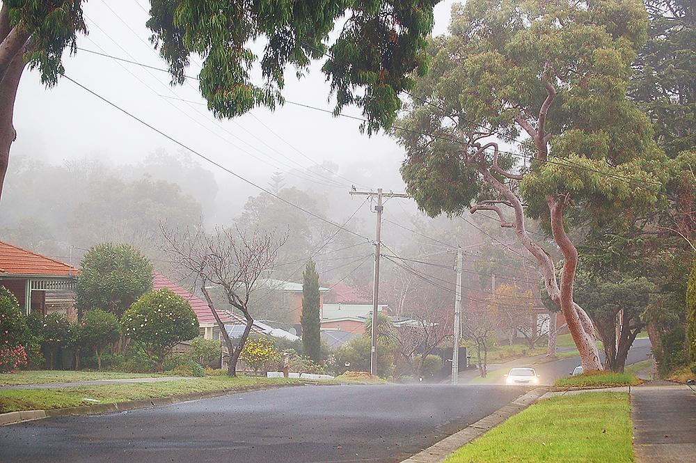 _fog_2_
