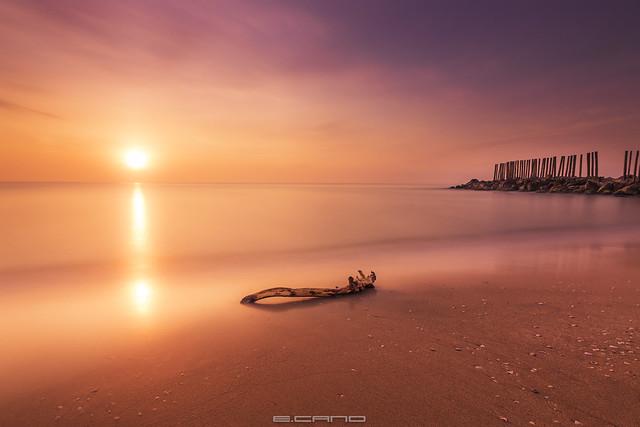 The Forbidden Beach