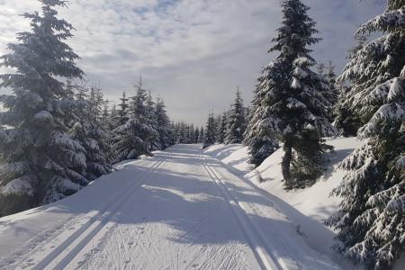 I přes nepříznivý vývoj středoevropského klimatu neochabuje mimořádná pozornost věnovaná před každou další zimní sezónou aktuální situaci v domácích i zahraničních lyžařských areálech. V posledních letech jsou předmě...