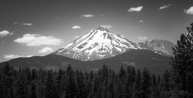 Majestic Shasta