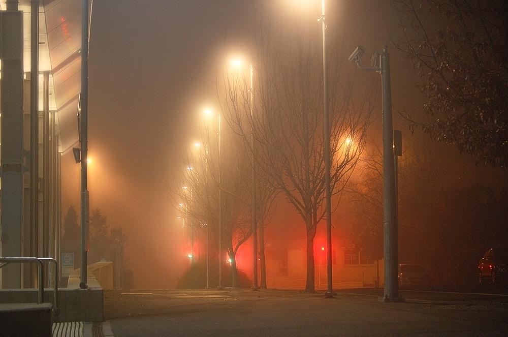 _fog_