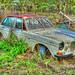 The Ancient Volvo in Mount Garnet - Jan 1, 2015