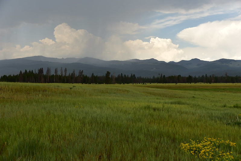 Logan Valley