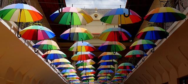 colors of umbrellas/Explored