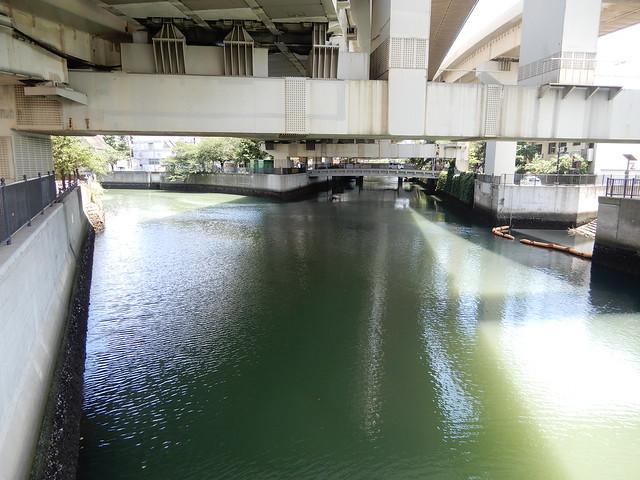 緑の大岡川 2021.7.10