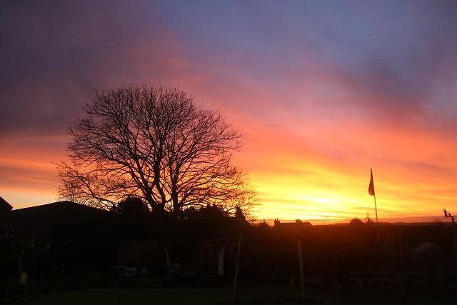 Sunrise in Seckington, UK.