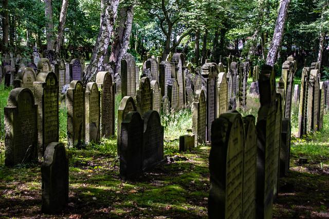 Jüdischer Friedhof (3)