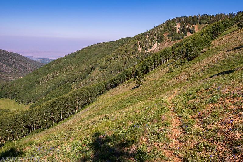Bachelor Basin Trail