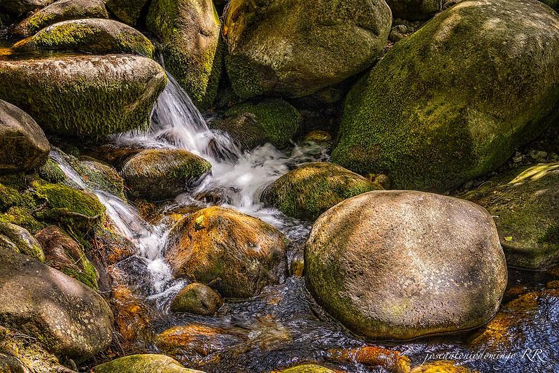 Un cachito del río
