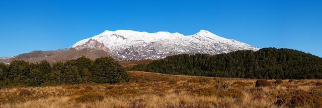 Mt Ruapehu pano