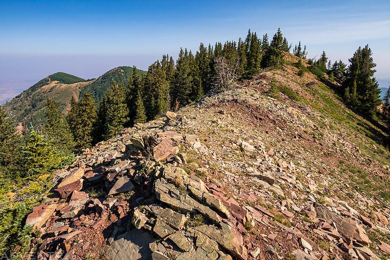 Horse Mountain Ridge