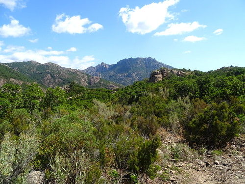 Chemin du Finicione RD : au 1er col (490m) - vers l'aval et Punta di Monte Sordu