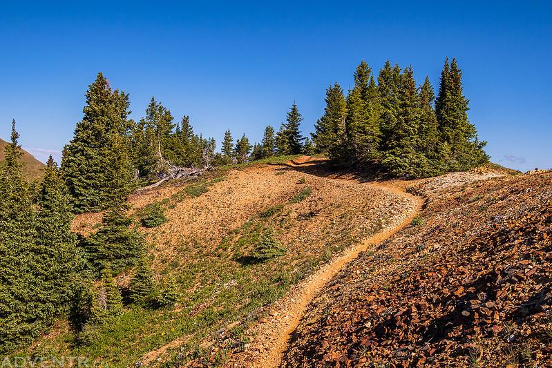 Calico Trail Curve