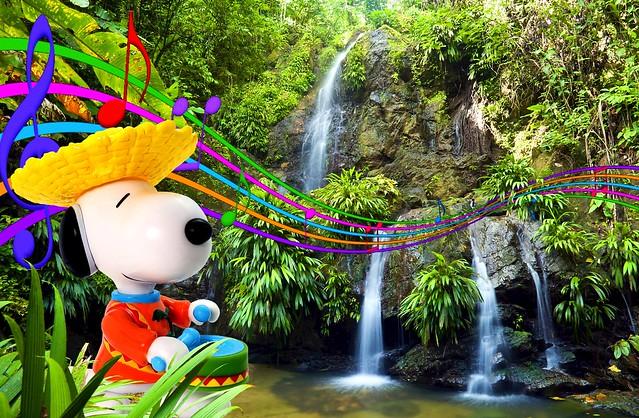 Jungle Carnival - Bijou Planks 192/365