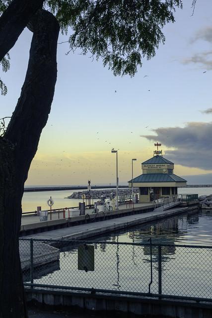 McKinley Marina Sunset