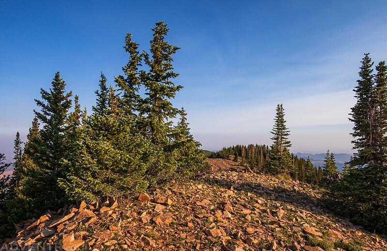 Horse Mountain Summit
