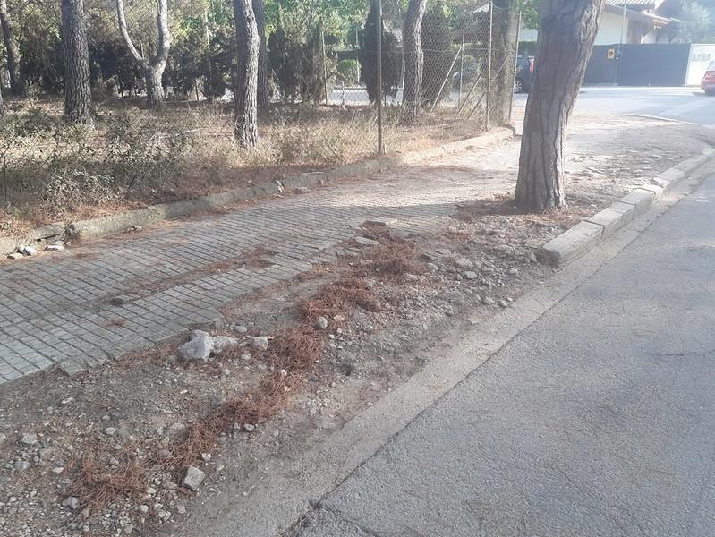 El Ayuntamiento arreglará la zona de la C / Juan de la Cierva, Terramar, en septiembre