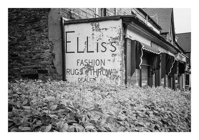 Elliss