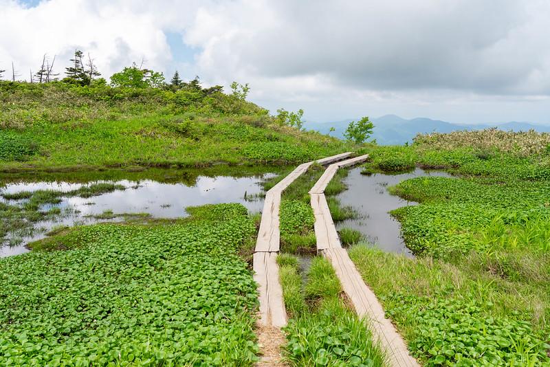 森吉山の木道