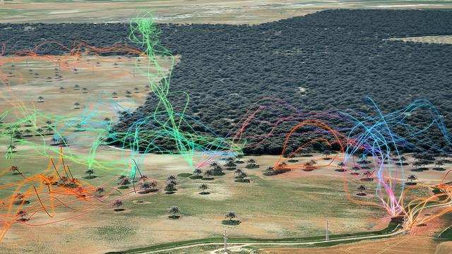 dispersal-events-through-the-matrix-e1625814275985