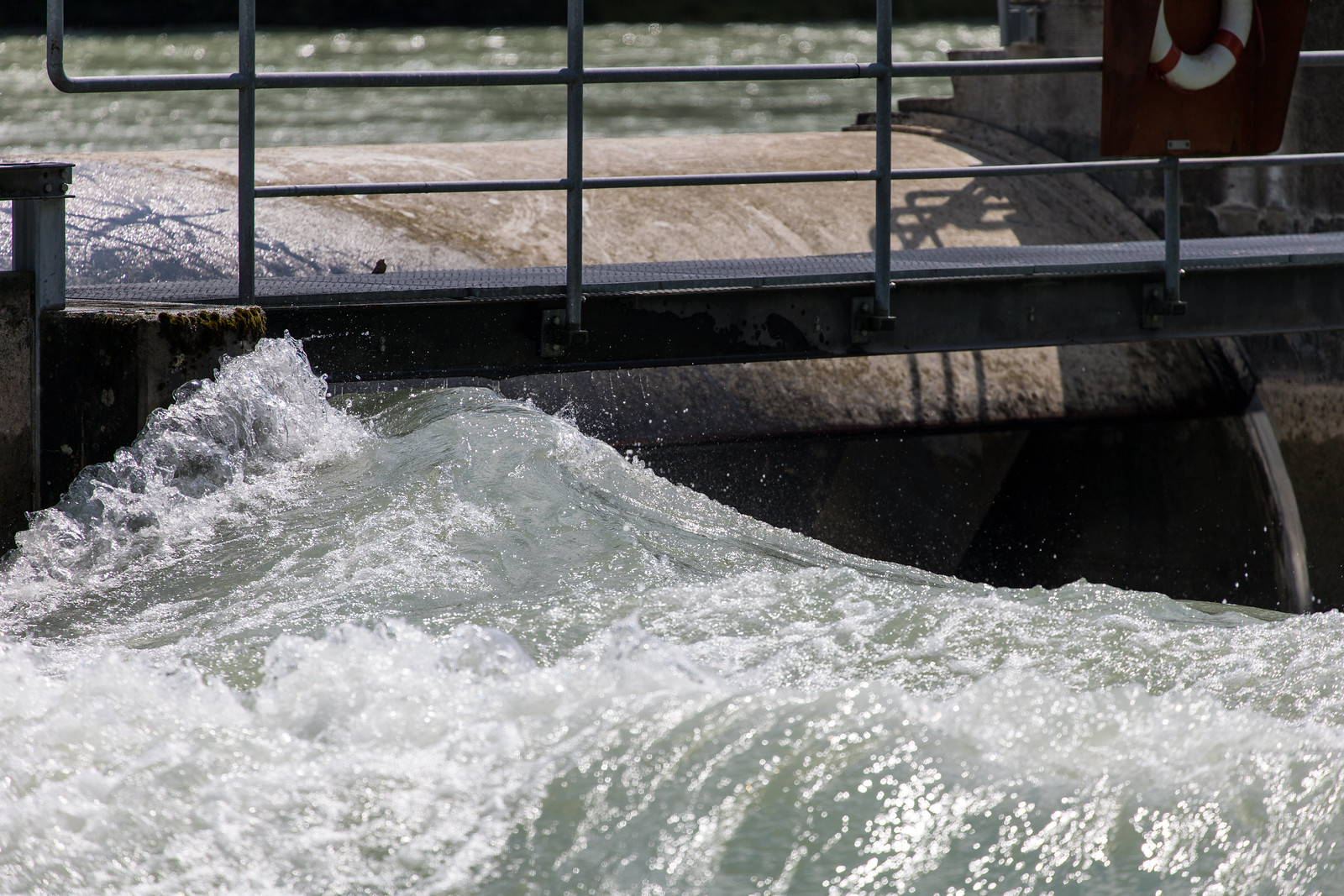 Hochwasser Bern 11.7 (1)