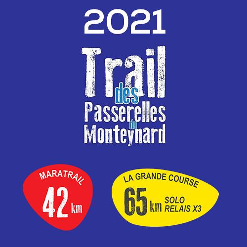 TPM - 2021 Passerelle du Drac