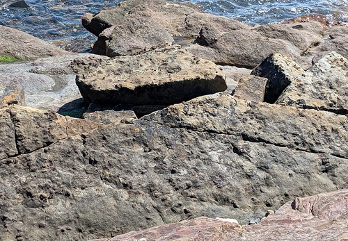 St Monans rocks, Fife