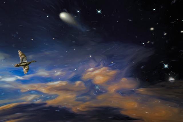 Typical Sky Scene
